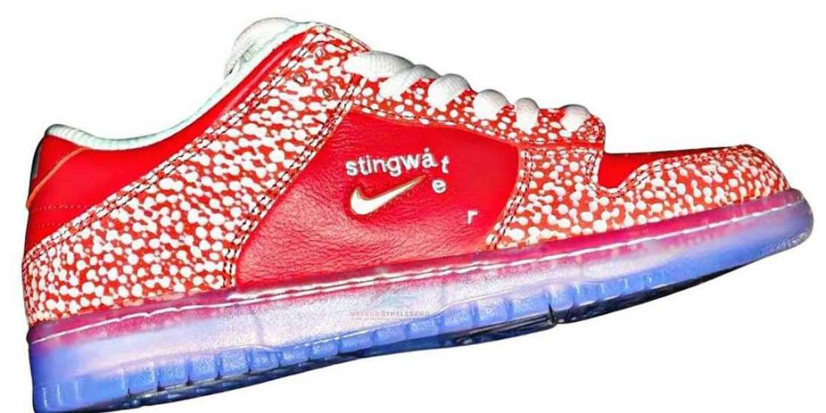 Newest 2021 Stingwater x Nike SB Dunk Low Skateboard Shoes